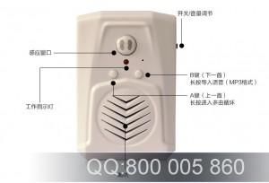 TF定制录音感应门铃 语音提示器 欢迎光临红外感应器 录音迎宾器